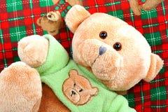αντέξτε teddy Στοκ εικόνες με δικαίωμα ελεύθερης χρήσης