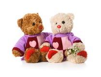 αντέχει το teddy παιχνίδι δύο Στοκ εικόνα με δικαίωμα ελεύθερης χρήσης