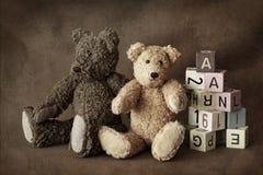 αντέχει teddy Στοκ εικόνες με δικαίωμα ελεύθερης χρήσης