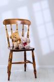 αντέχει teddy Στοκ φωτογραφίες με δικαίωμα ελεύθερης χρήσης