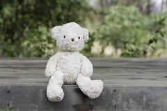 αντέχει teddy Στοκ Εικόνα