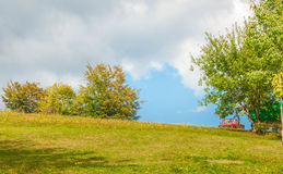 Αντίθεση στη φύση Στοκ εικόνα με δικαίωμα ελεύθερης χρήσης