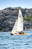 Ανταγωνισμός πανιών Στοκ φωτογραφίες με δικαίωμα ελεύθερης χρήσης