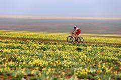 Ανταγωνισμός ποδηλάτων βουνών περιπέτειας άνοιξη Στοκ Εικόνες