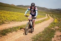 Ανταγωνισμός andventure ποδηλάτων βουνών Στοκ Εικόνες