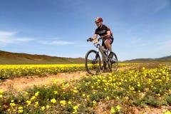 Ανταγωνισμός andventure ποδηλάτων βουνών Στοκ Φωτογραφία