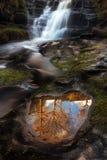 Αντανάκλαση δέντρων Blaen Υ Glyn Στοκ φωτογραφία με δικαίωμα ελεύθερης χρήσης