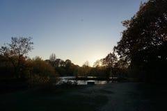 Αντανάκλαση λιμνών πάρκων φύσης Mitcham στοκ εικόνες με δικαίωμα ελεύθερης χρήσης