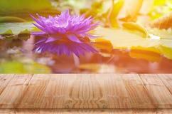 Αντανάκλαση λουλουδιών Lotus στη λίμνη με το ξύλινο πρώτο πλάνο πινάκων Στοκ Εικόνες