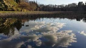 Αντανάκλαση νερού των άσπρων σύννεφων και του μπλε ουρανού απόθεμα βίντεο