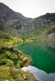 Αντανάκλαση στην πράσινη λίμνη νερού Cristal σαφή Στοκ Φωτογραφίες