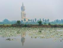 Αντανάκλαση του μεγάλου αγάλματος του Βούδα στο ναό Wat Muang, επαρχία Angthong, Ταϊλάνδη με τον τομέα ρυζιού Στοκ Εικόνες