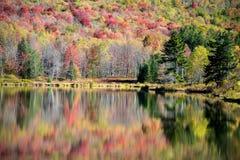 Αντανάκλαση φθινοπώρου Στοκ Εικόνες