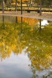 αντανάκλαση φθινοπώρου στοκ φωτογραφίες