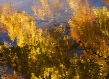 Αντανάκλαση φθινοπώρου Στοκ φωτογραφία με δικαίωμα ελεύθερης χρήσης