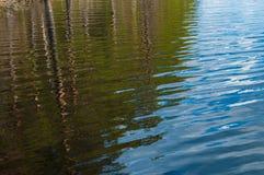 αντανάκλαση δέντρων Στοκ φωτογραφία με δικαίωμα ελεύθερης χρήσης