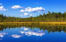 Αντανάκλαση δασών και ουρανού Στοκ φωτογραφία με δικαίωμα ελεύθερης χρήσης