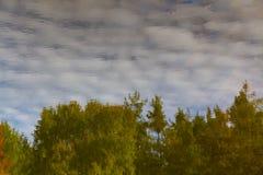 Αντανάκλαση νερού των σύννεφων και του δέντρο-τσεχικού υφάσματος Στοκ εικόνες με δικαίωμα ελεύθερης χρήσης