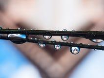 Αντανάκλαση πτώσης νερού σε υπαίθριο Στοκ Φωτογραφία