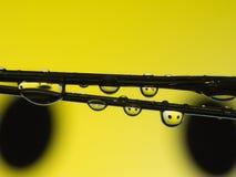 Αντανάκλαση πτώσης νερού στο κίτρινο χαμόγελο Στοκ Εικόνες