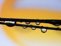 Αντανάκλαση πτώσης νερού στο κίτρινο χαμόγελο Στοκ Εικόνα