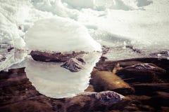 Αντανάκλαση στη λίμνη Στοκ Εικόνα