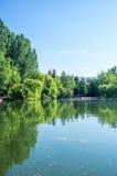 Αντανάκλαση του πράσινου πάρκου στη λίμνη Στοκ εικόνα με δικαίωμα ελεύθερης χρήσης
