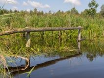 Αντανάκλαση των ξύλινων πόλων Στοκ φωτογραφία με δικαίωμα ελεύθερης χρήσης