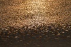 Αντανάκλαση φωτός του ήλιου στο γραπτό τόνο ποταμών Στοκ Εικόνες