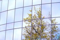 αντανακλάσεις γραφείων οικοδόμησης Στοκ Φωτογραφίες