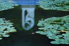 αντανακλάσεις λιμνών στοκ εικόνα με δικαίωμα ελεύθερης χρήσης