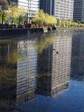 Αντανακλάσεις πόλεων σε ένα χορταριασμένο σύνολο τάφρων των παπιών Στοκ Φωτογραφίες