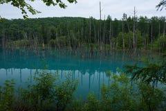 Αντανακλάσεις στο σαφές μπλε νερό της μπλε λίμνης Shirogane Στοκ φωτογραφίες με δικαίωμα ελεύθερης χρήσης