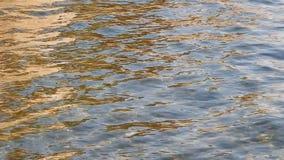 Αντανακλάσεις του φωτός στην επιφάνεια νερού φιλμ μικρού μήκους