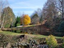 Αντανακλάσεις των όμορφων δέντρων φθινοπώρου σε μια σαφή λίμνη Στοκ Φωτογραφία