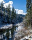 Αντανακλαστικός ποταμός το χειμώνα στοκ εικόνες