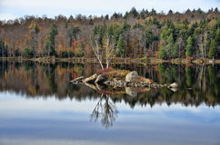 Αντανακλάσεις αριθ. νερού λιμνών Adirondack φθινοπώρου 13 Στοκ Φωτογραφία