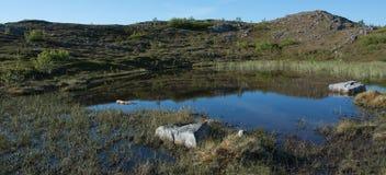 Αντανακλάσεις και βουνό Στοκ εικόνα με δικαίωμα ελεύθερης χρήσης