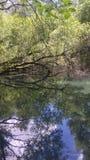 Αντανακλάσεις νερού Στοκ εικόνα με δικαίωμα ελεύθερης χρήσης