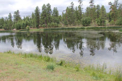 Αντανακλάσεις σε μια λίμνη Στοκ εικόνες με δικαίωμα ελεύθερης χρήσης