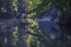 Αντανακλάσεις στη σκοτεινή λίμνη Στοκ εικόνα με δικαίωμα ελεύθερης χρήσης