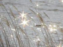 Αντανακλάσεις στο νερό Στοκ Εικόνα
