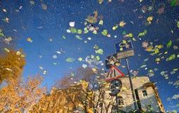 Αντανακλημένη οδός Τοπίο φθινοπώρου Στοκ Εικόνες