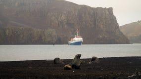 Ανταρκτική σφραγίδα γουνών στο νησί εξαπάτησης στην Ανταρκτική στοκ φωτογραφία με δικαίωμα ελεύθερης χρήσης
