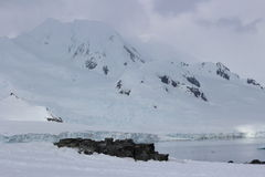 Ανταρκτική - τοπίο Στοκ εικόνα με δικαίωμα ελεύθερης χρήσης