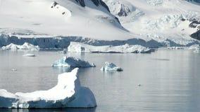 Ανταρκτική φιλμ μικρού μήκους