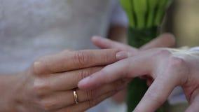 ανταλλαγή του γάμου δαχ& απόθεμα βίντεο
