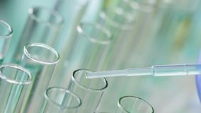 Αντιδραστήριο εργαστηριακών το βοηθητικό σταλαγματιών, παρατηρεί την αντίδραση, επιστημονικά πειράματα απόθεμα βίντεο
