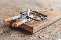 Αντικαπνιστικό υπόβαθρο με τα σπασμένα τσιγάρα σε μια παγίδα Στοκ Εικόνες