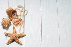 Αντικείμενα θάλασσας - κοχύλια, αστέρι θάλασσας, μαργαριτάρια Στοκ φωτογραφία με δικαίωμα ελεύθερης χρήσης